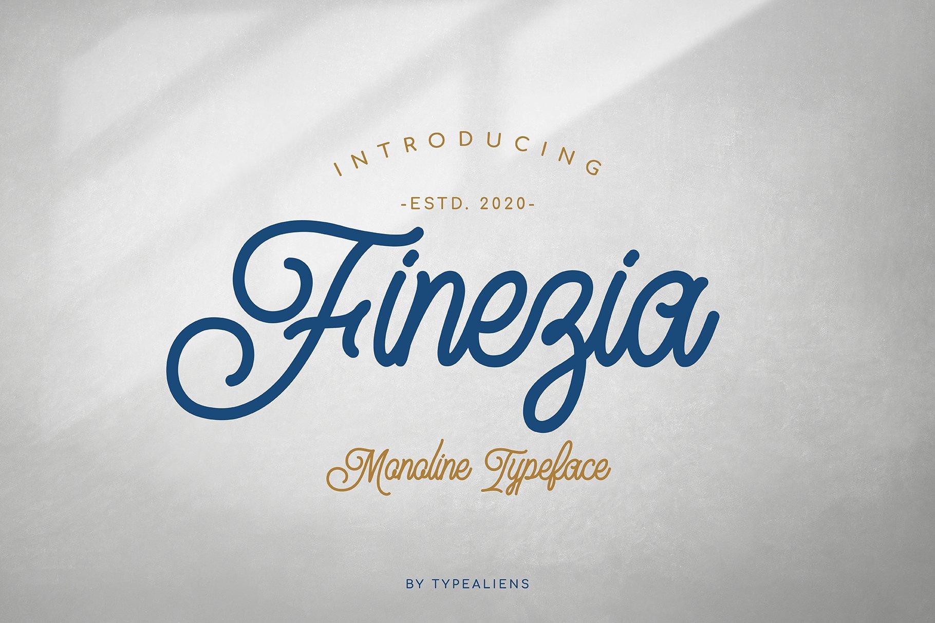 Finezia example image 1