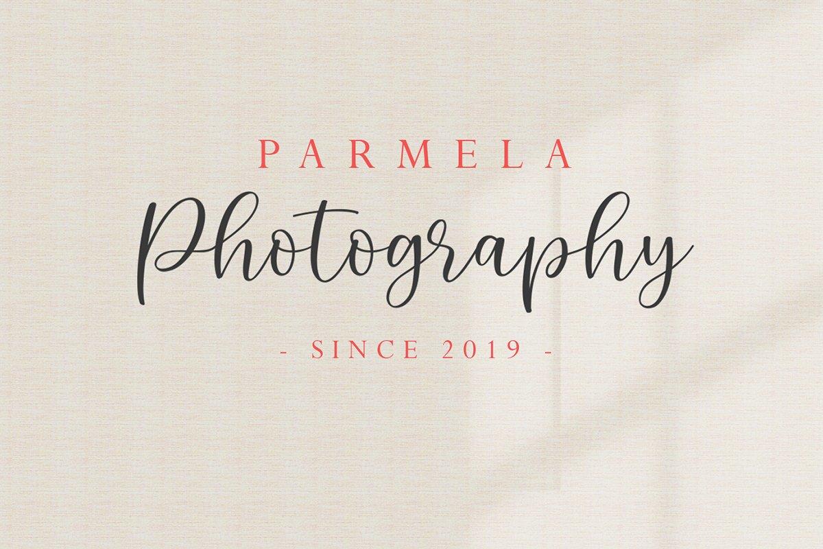 Parmela - Chic Modern Script example image 9