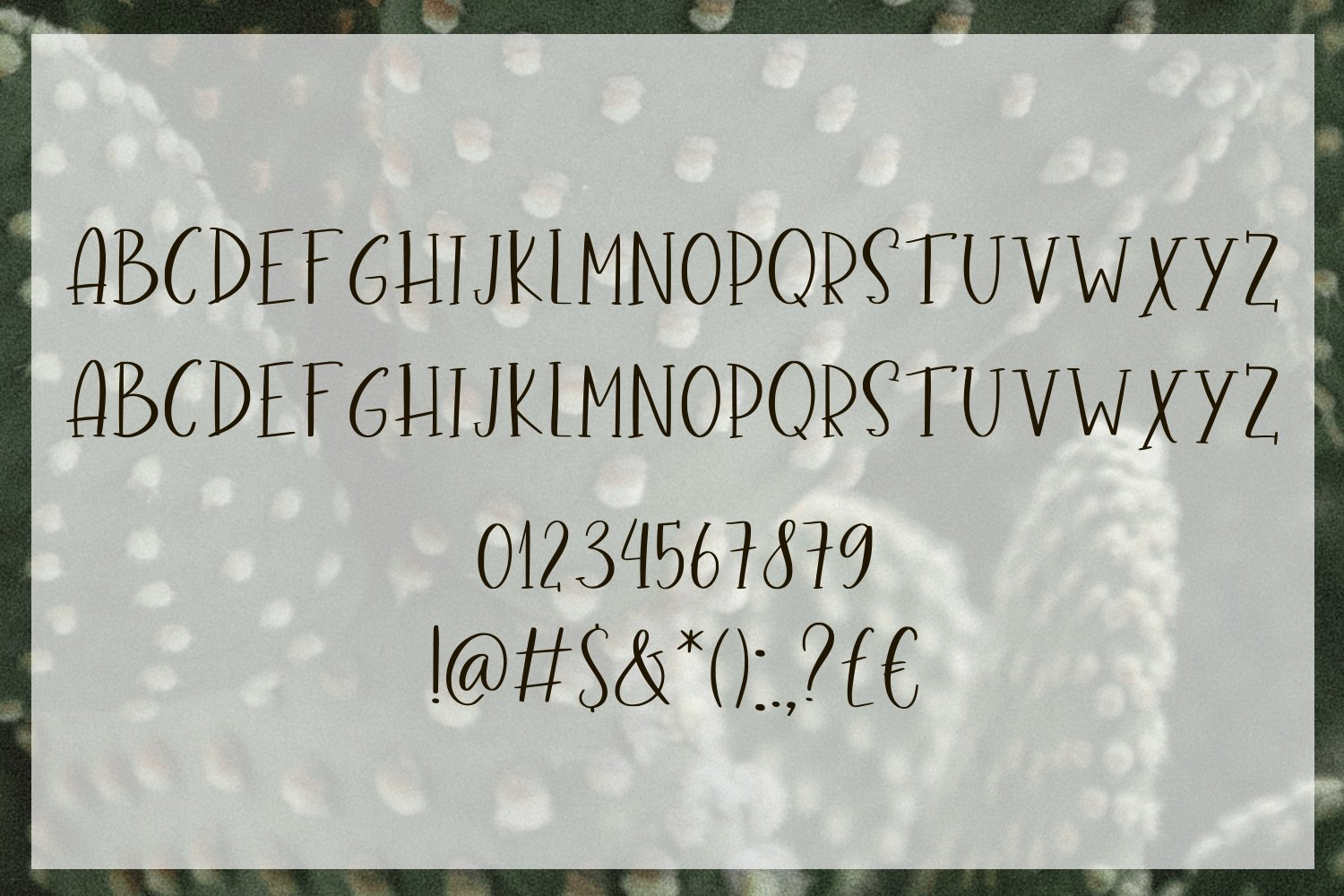 Cacti Bloom Font Duo example image 7