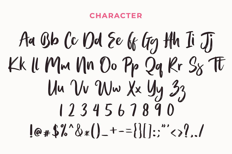 Hugost Handwritten Brush Font example image 6