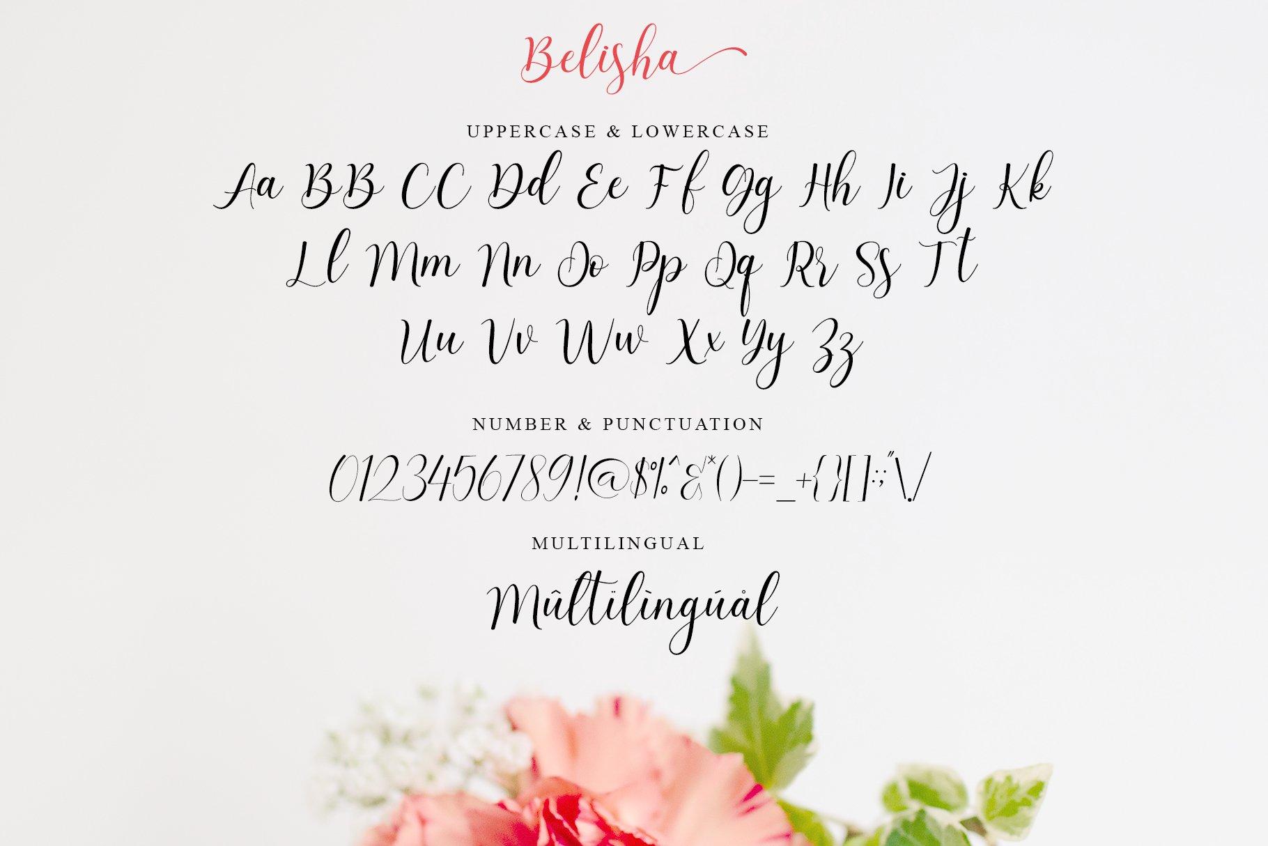 Belisha Modern Script example image 9