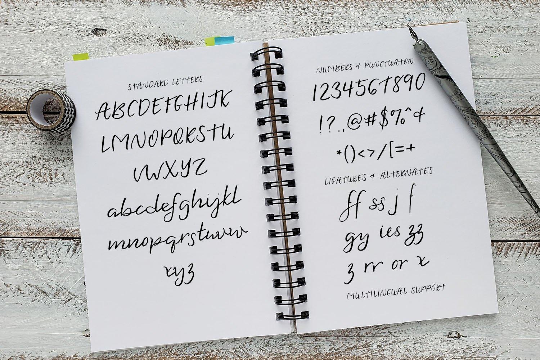 Plein Air Script Font example image 6