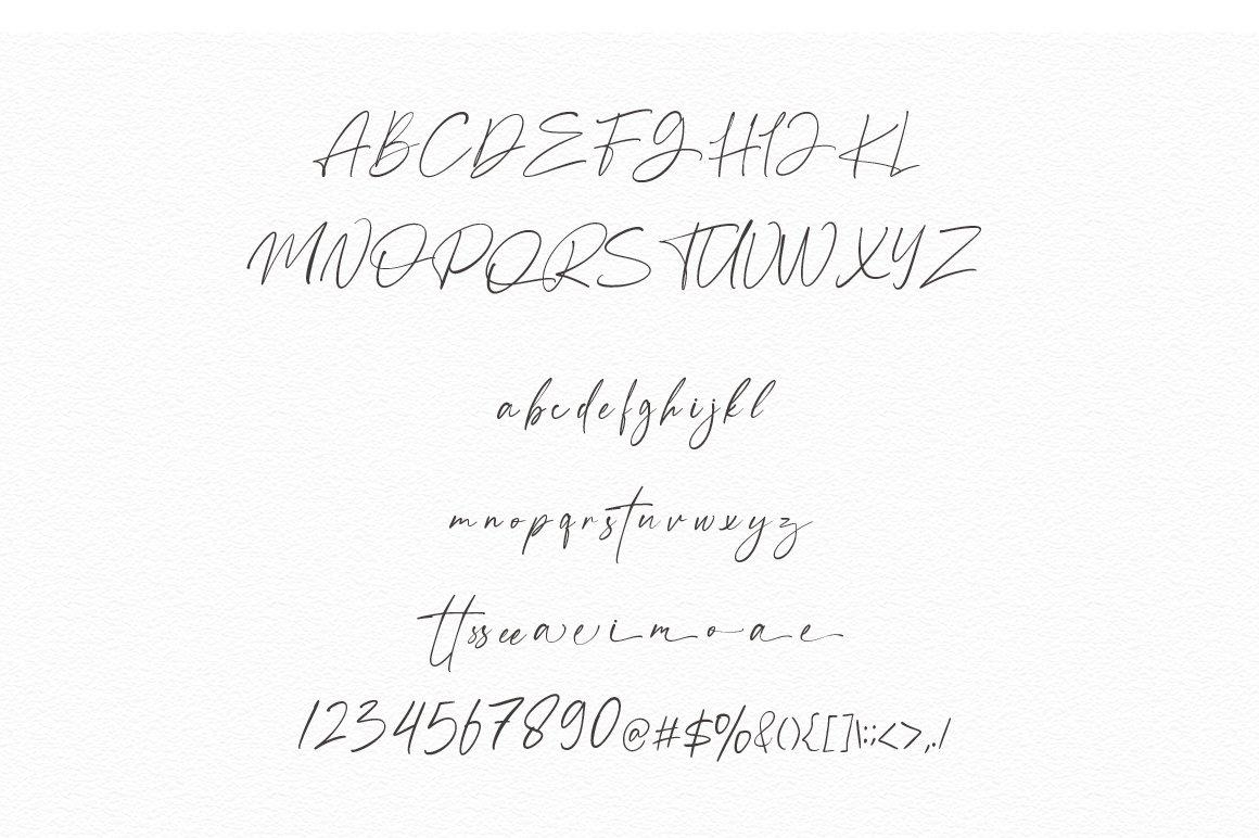 Anamortee // Modern Calligraphy Font example image 13