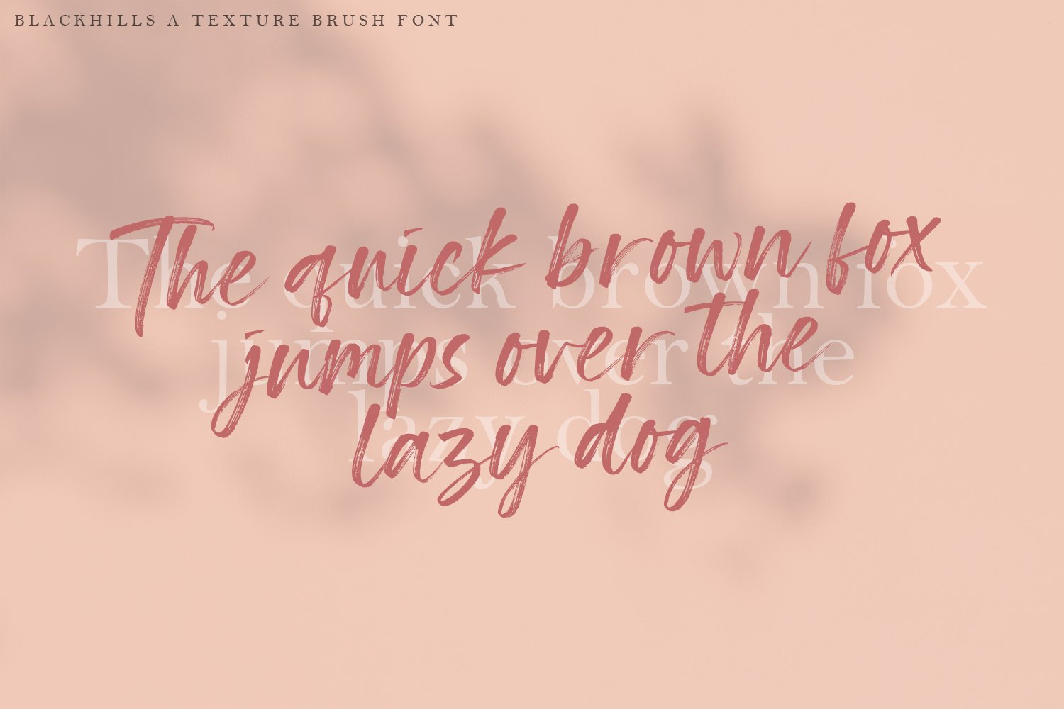 Blackhills - Brush Fonts example image 8