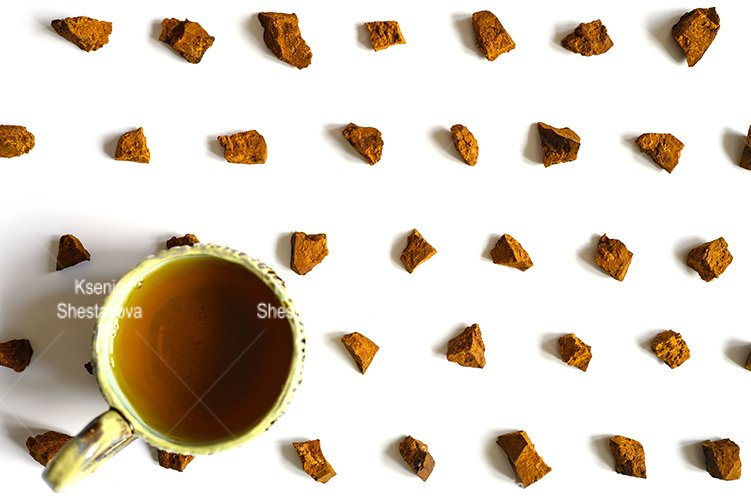 chaga mushroom broken pieces of birch tree fungus and cup example image 1