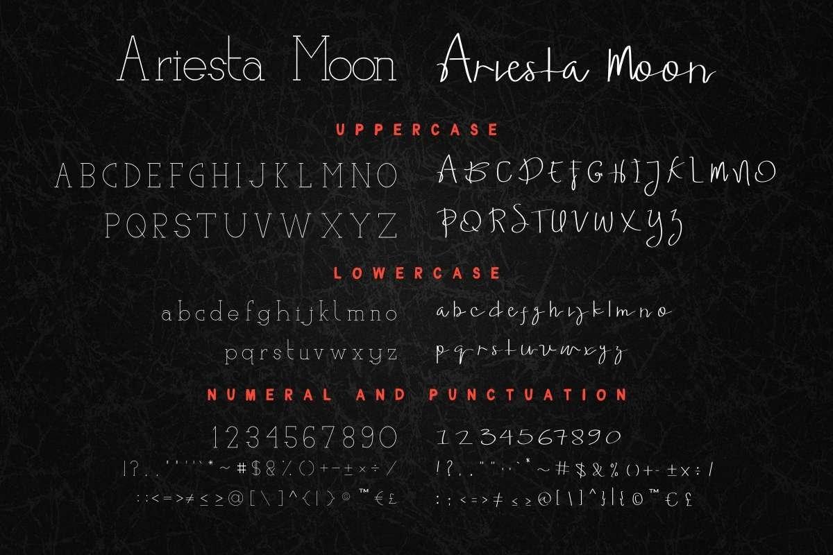 Ariesta Moon example image 5