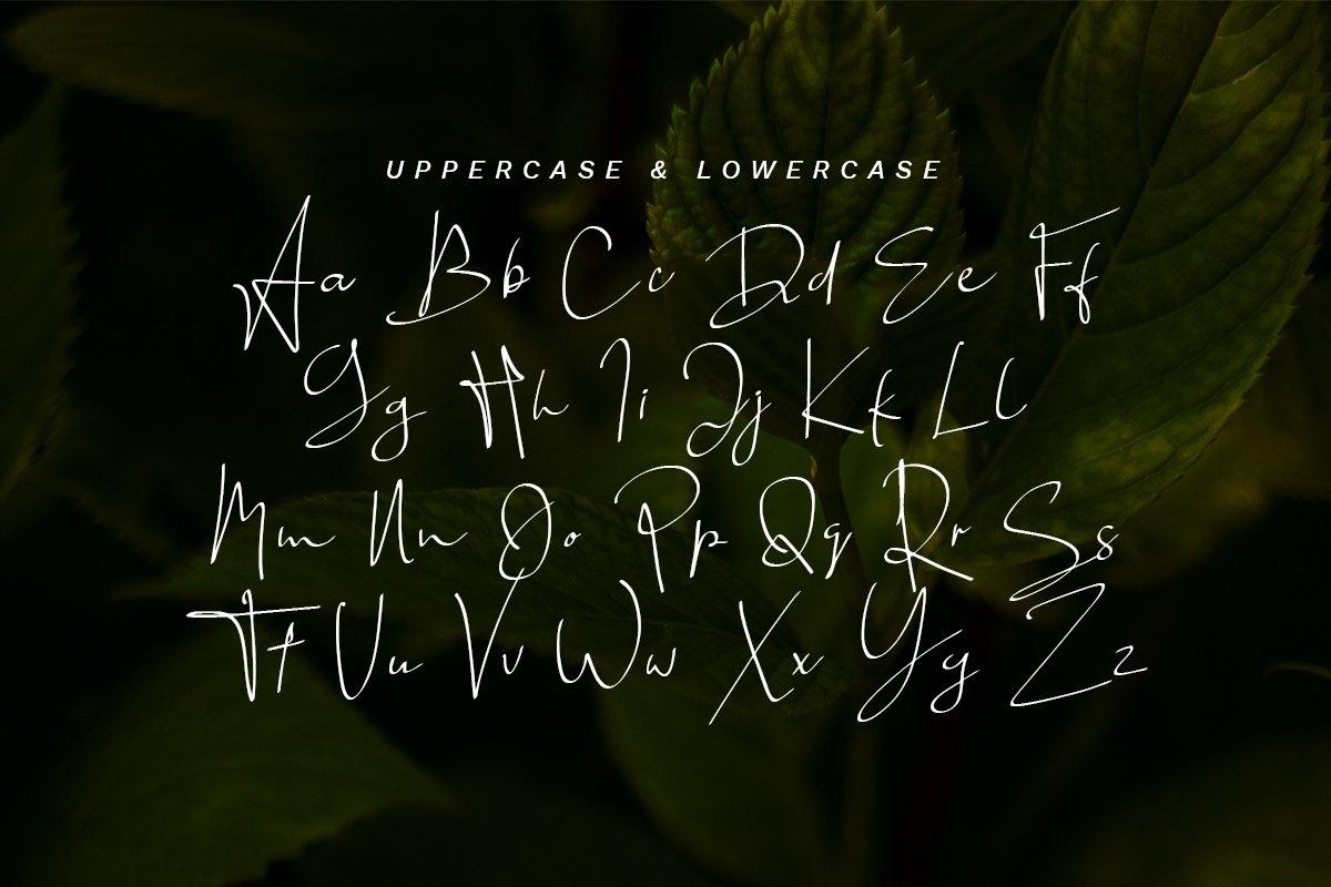 Mongoill - Stylish Signature Font example image 8