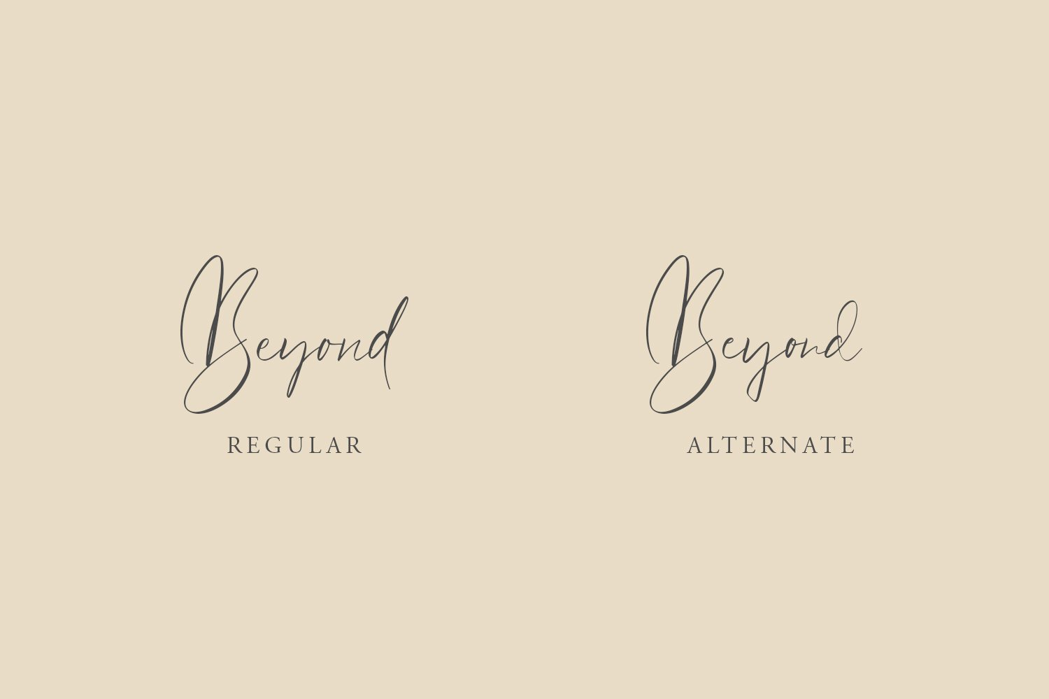 Beyond Signature Font example image 2