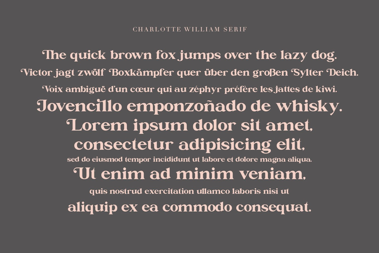 Charlotte William Font Duet example image 3