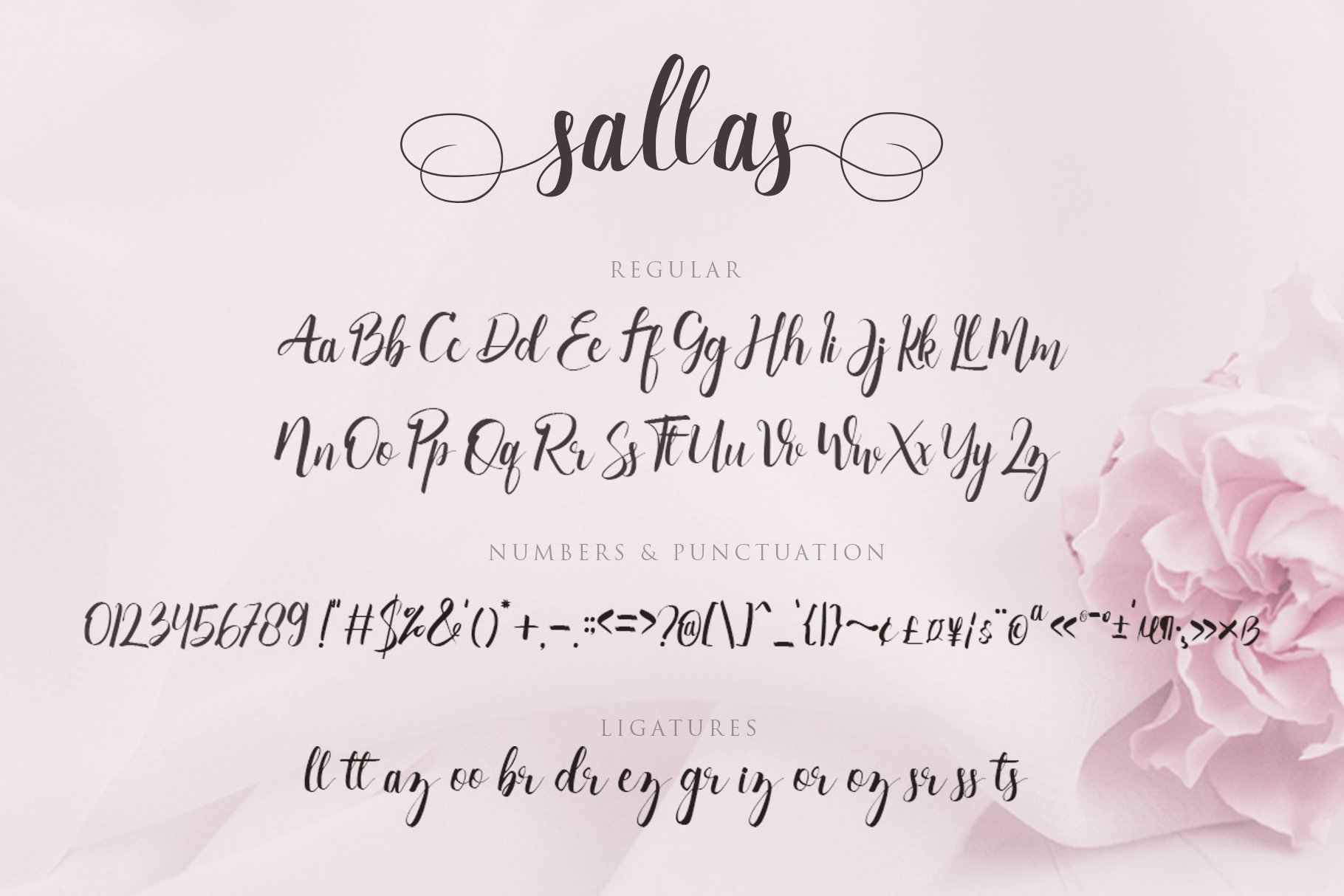 Sallas example image 7