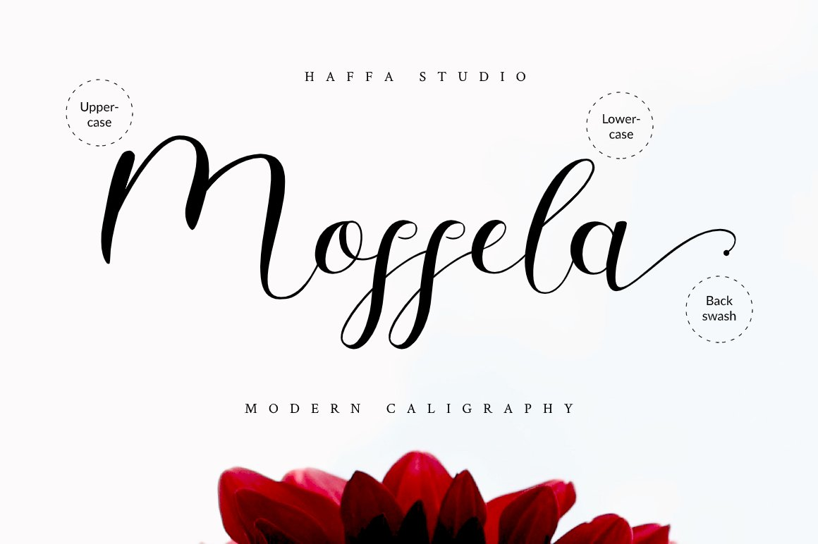 Mosella example image 9
