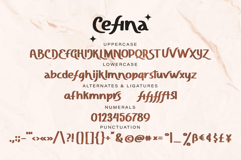 Cefina - Handwritten Sans Font example image 4