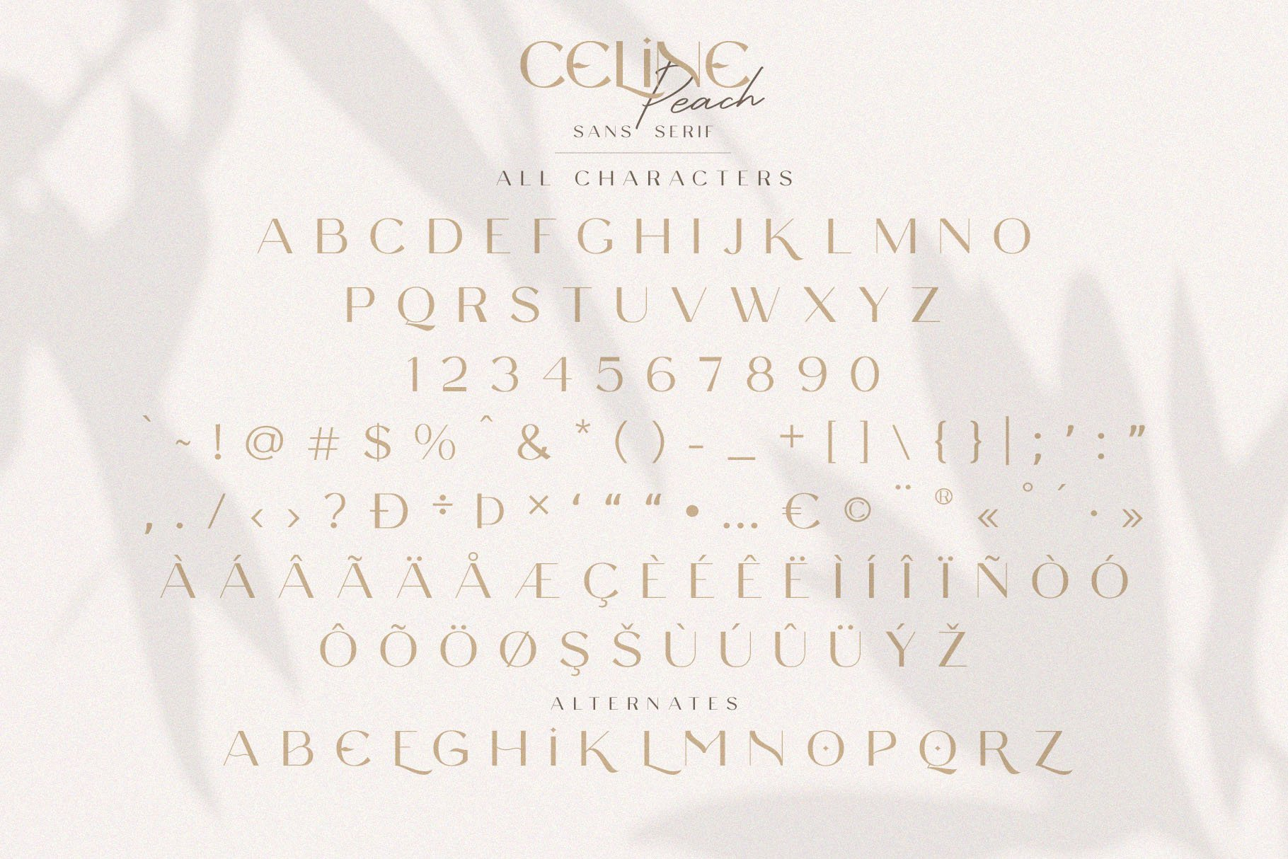 Celine Peach - A Luxury Font Duo example image 11