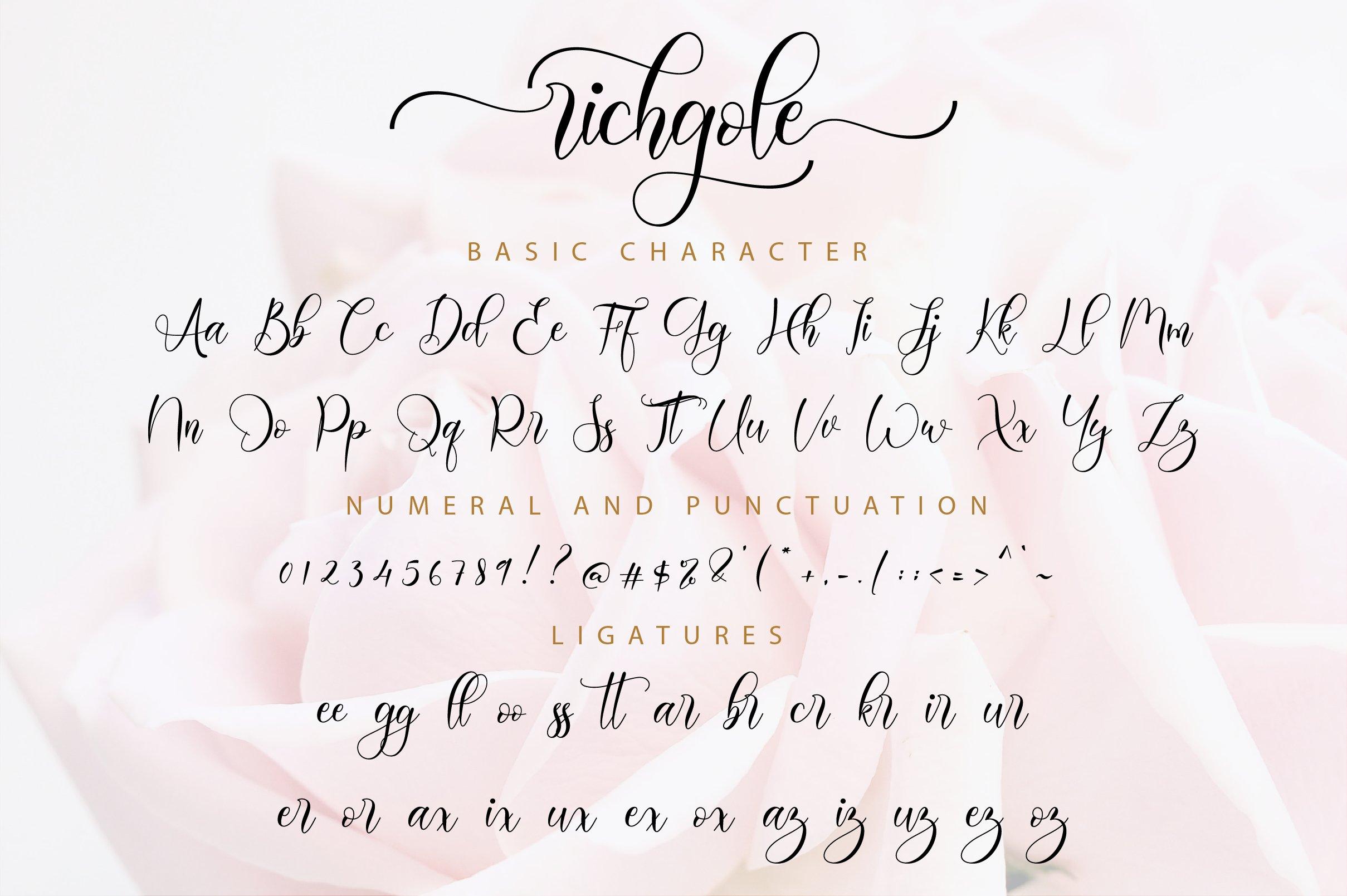 Richgole Script example image 11