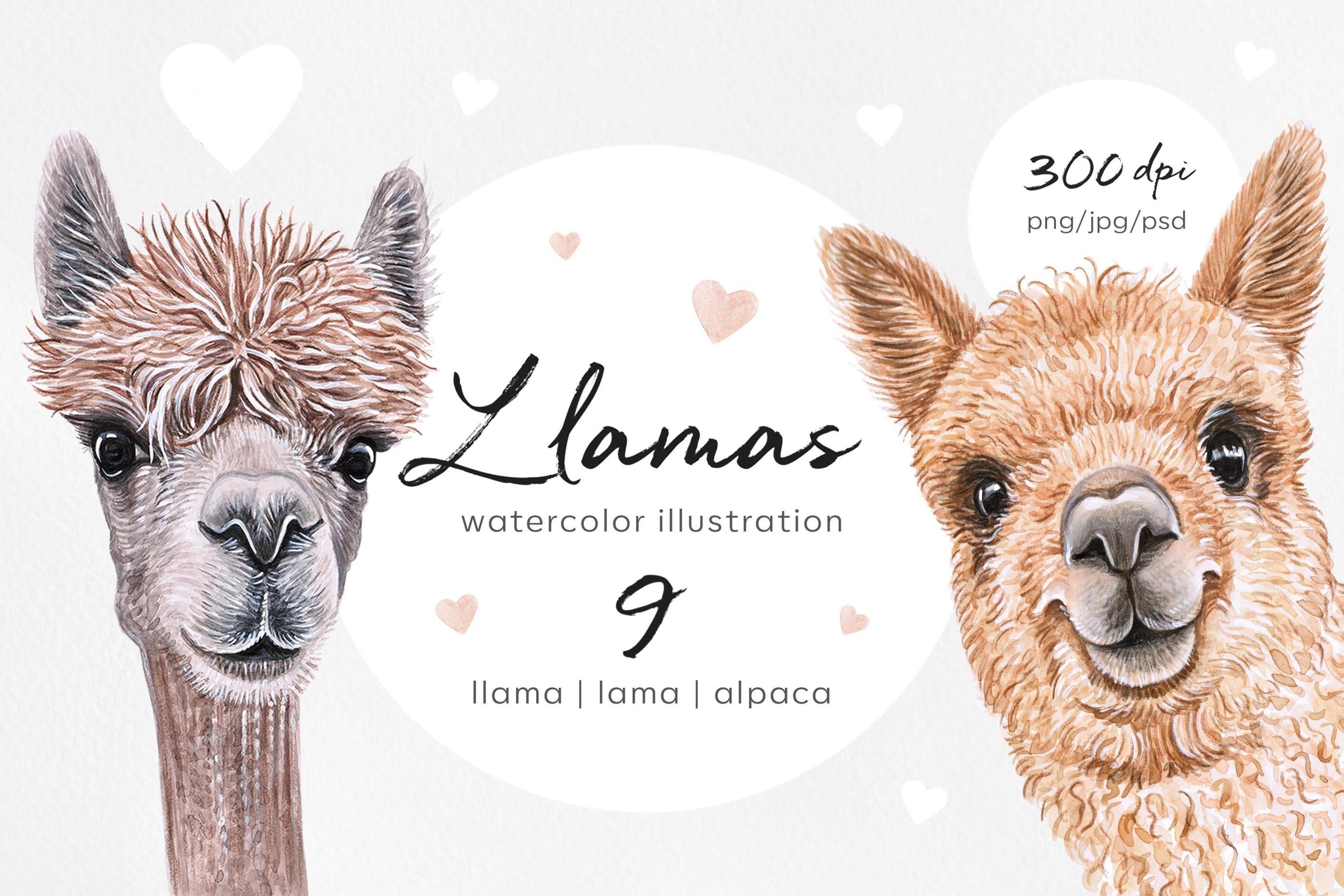 Llama lama alpaca. Watercolor set 9 illustrations.
