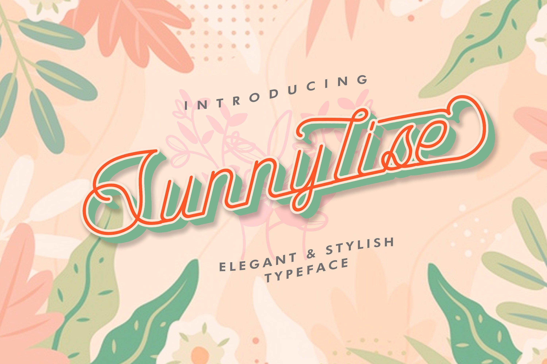Sunnylise Font example image 1