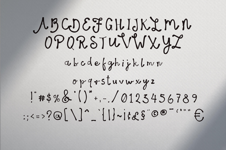 14 Fonts bundle vol.3 example image 15