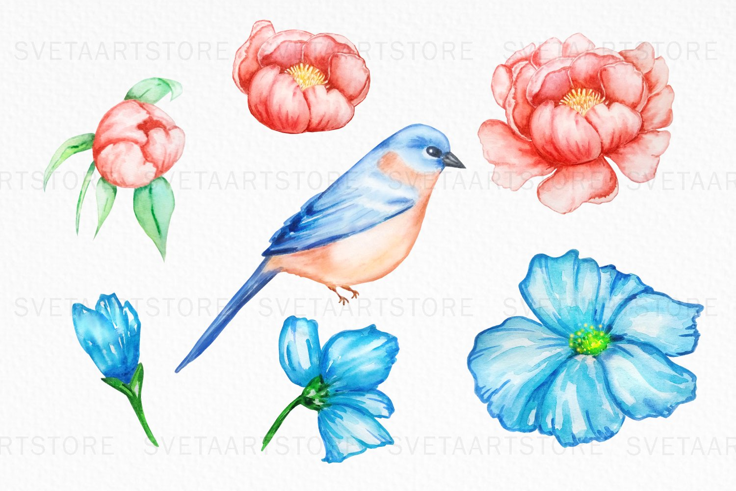 Bird and Flowers Peony Watercolor Clipart example image 2