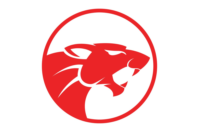Tiger Logo example image 1