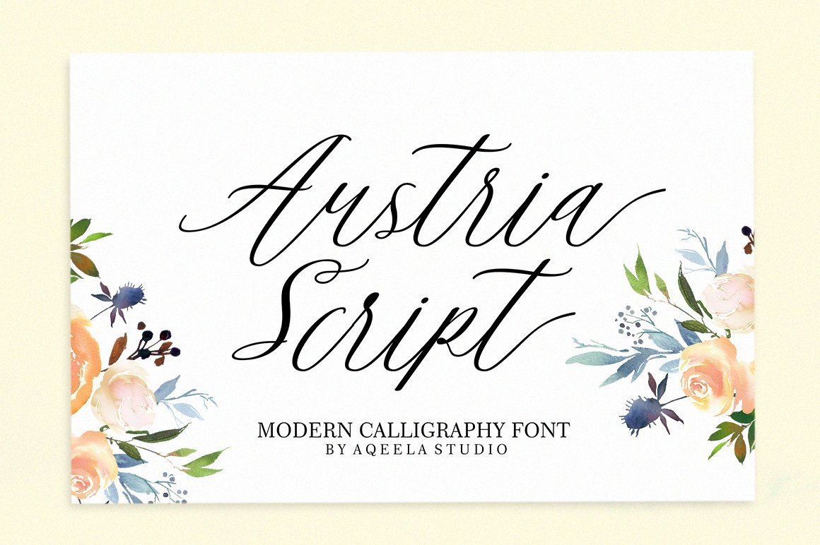 28 Fancy Script Fonts example image 10