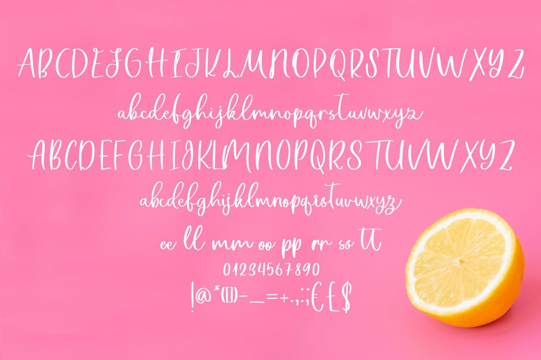 Lemon Night Font Duo example image 3