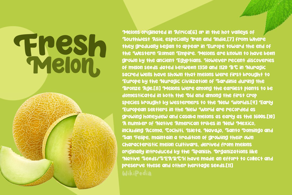 Fresh Melon example image 2