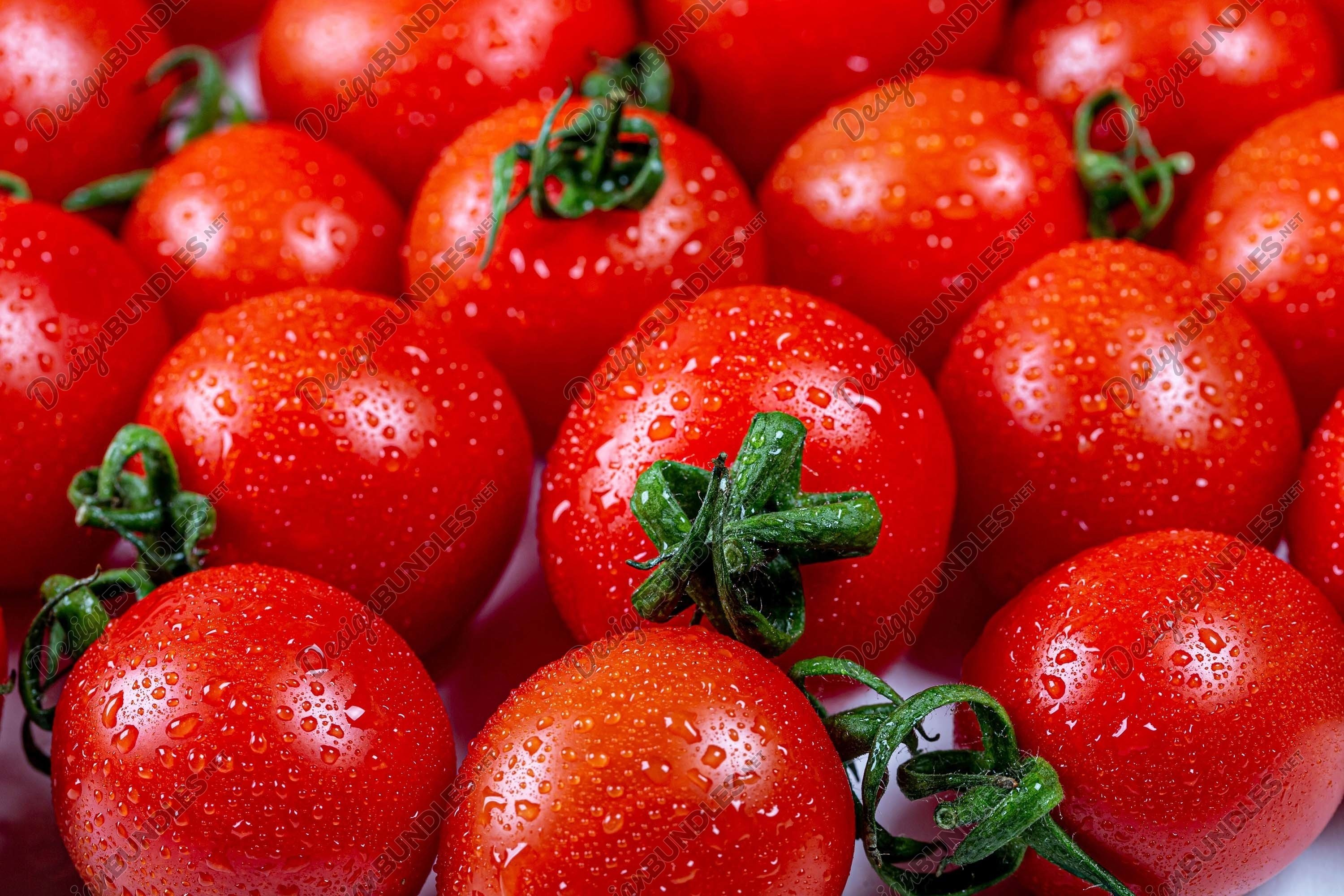 Stock Photo - Close-up of a heap of tomatoes example image 1