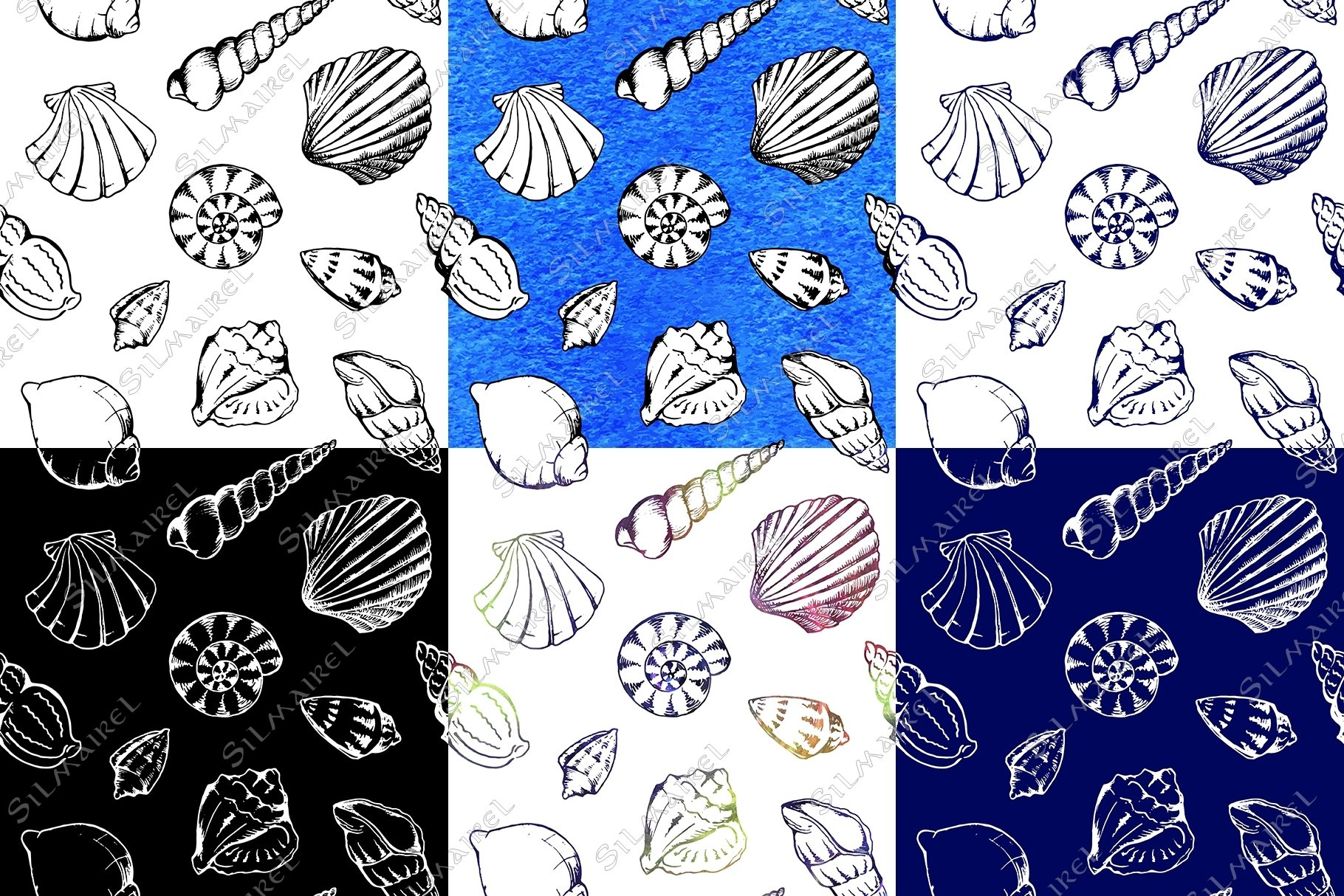 Seashell ink set vector example image 5