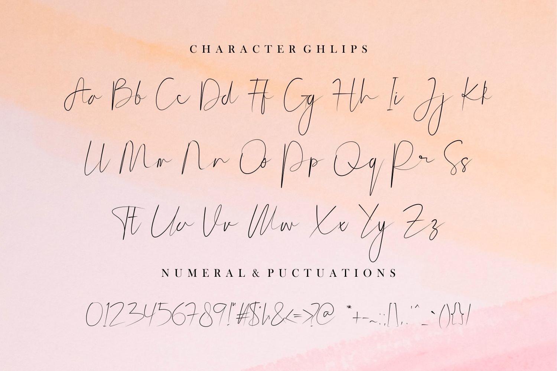 Beasthetic // a Signature Font Script example image 9