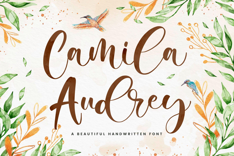 Camila Audrey - Beautiful Script Font example image 1