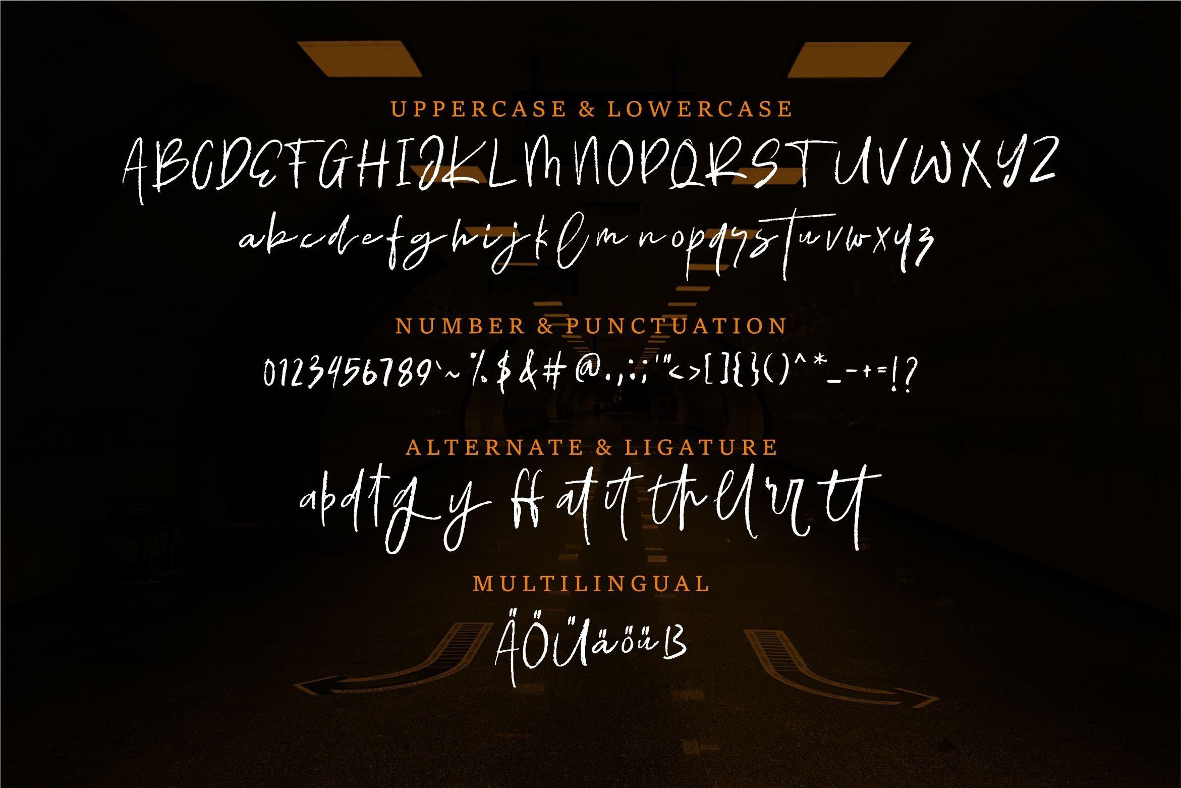 Ellamy - Script Brush Font example image 2