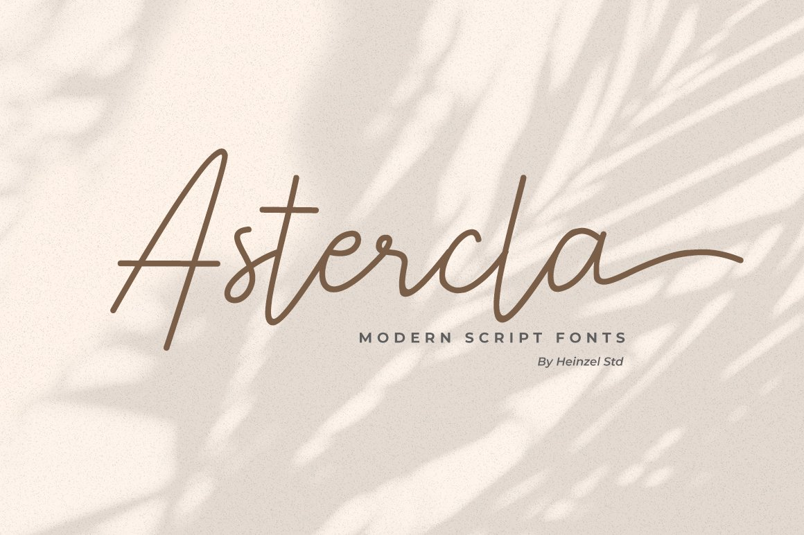 Astercla example image 1