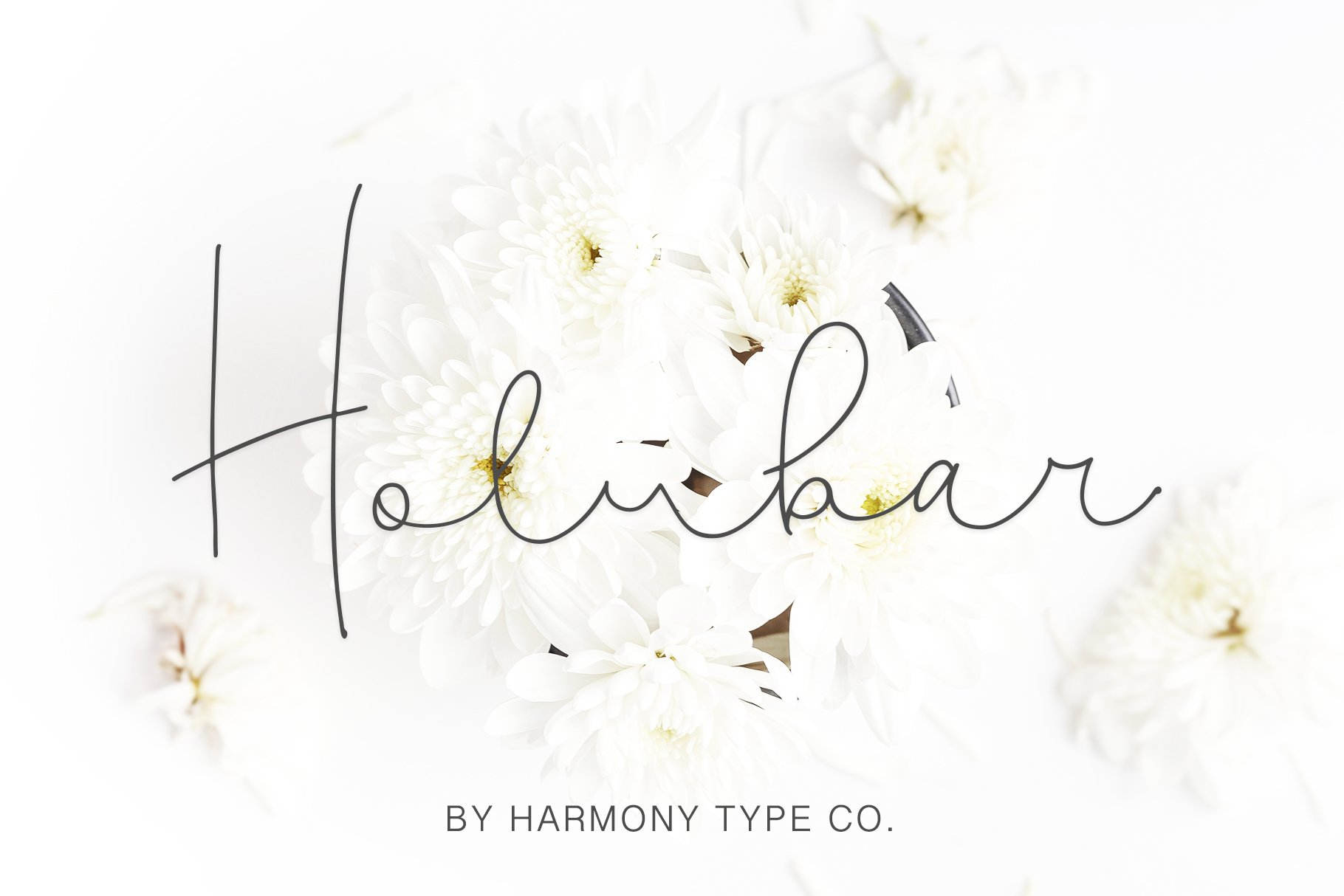 47 IN 1 FONT BUNDLE example image 8