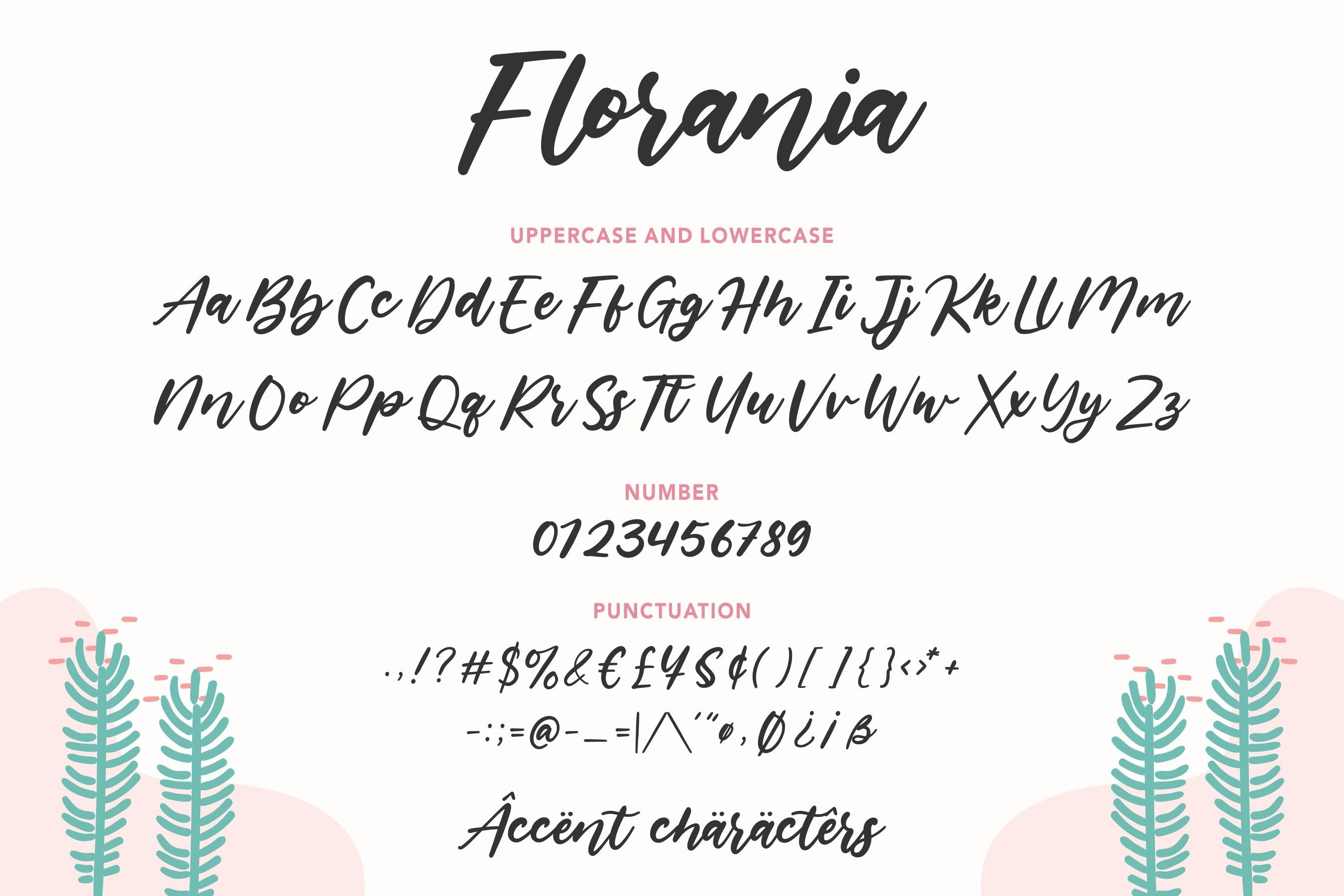 Florania Modern Calligraphy Font example image 6