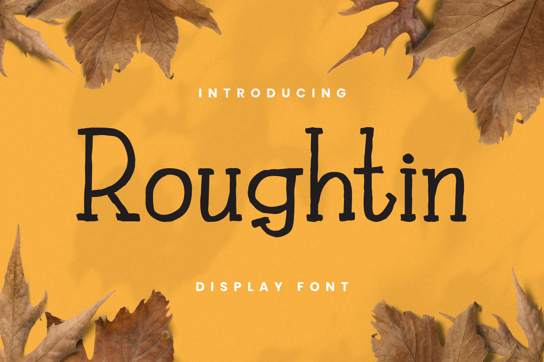 Rougthin Font example image 1
