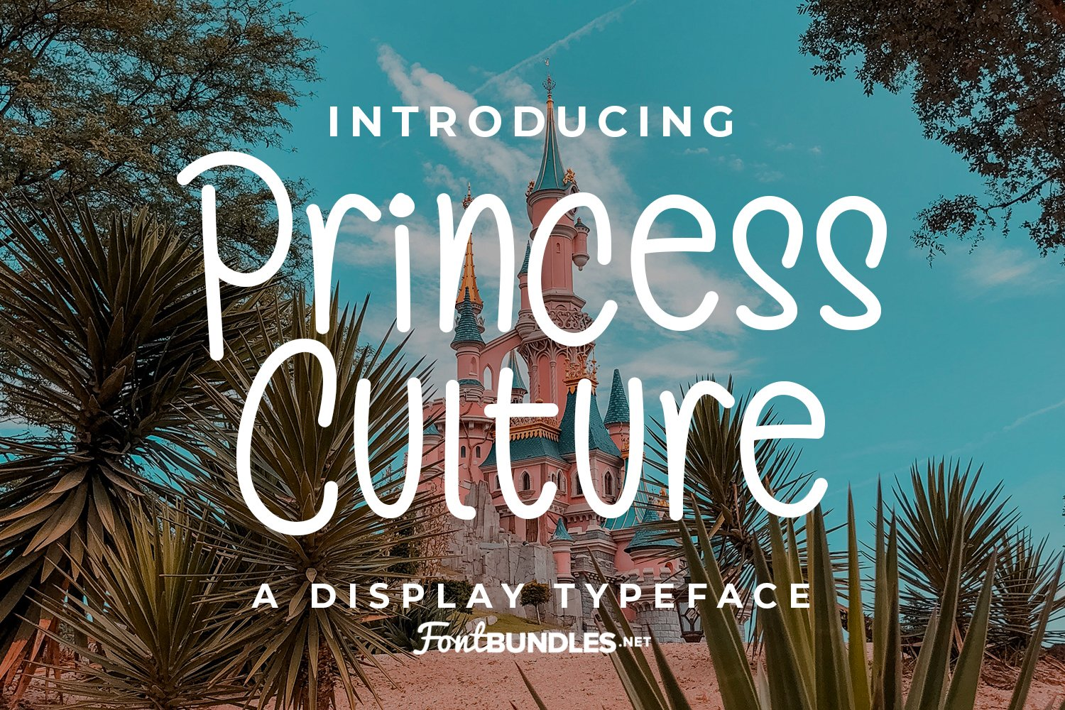 Pricess Culture example image 1