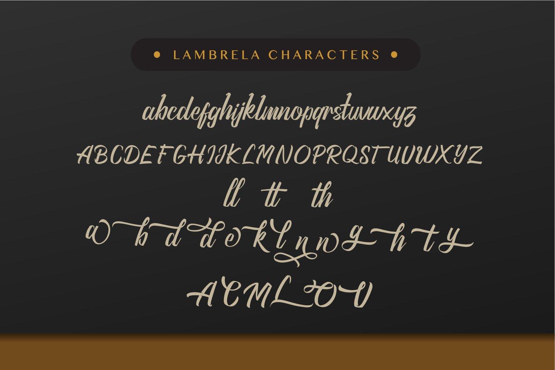 Lambrela example image 6