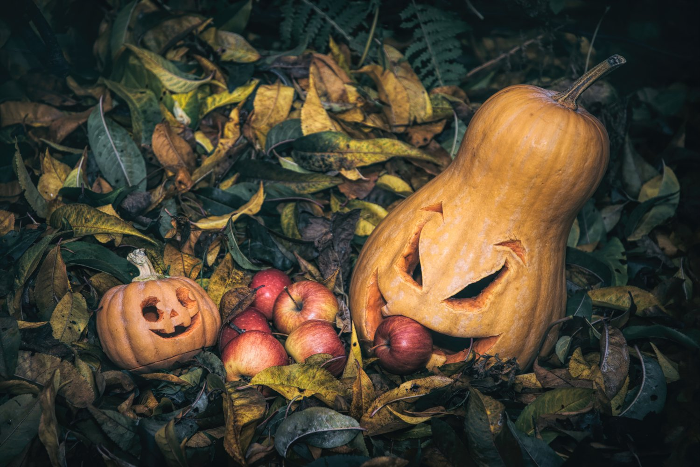 Halloween Pumpkin Jack O'Lantern example image 1