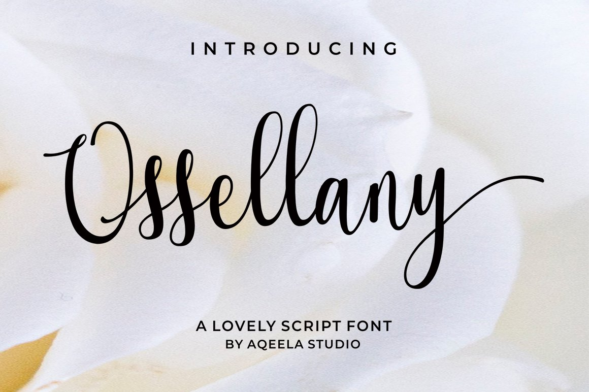28 Fancy Script Fonts example image 17