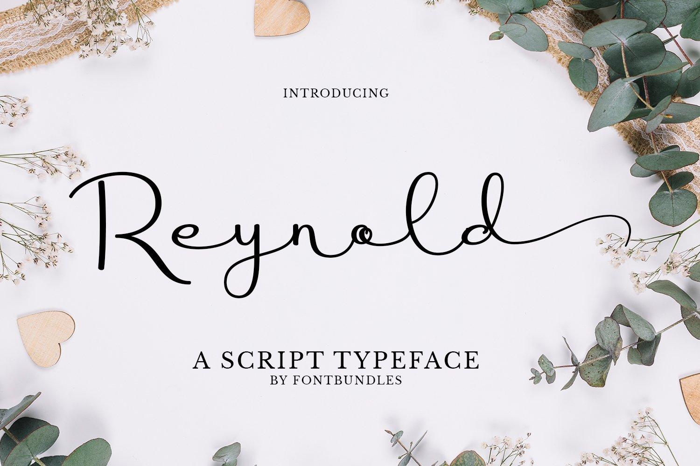 Reynold example image 1