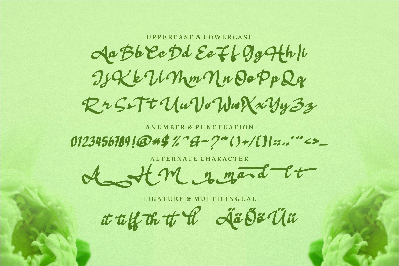 Hellena - Stylish & Modern Script Font example image 6
