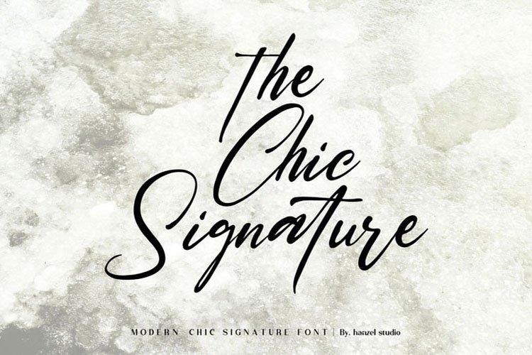 Saltacrus//Chic Signature Font example image 4