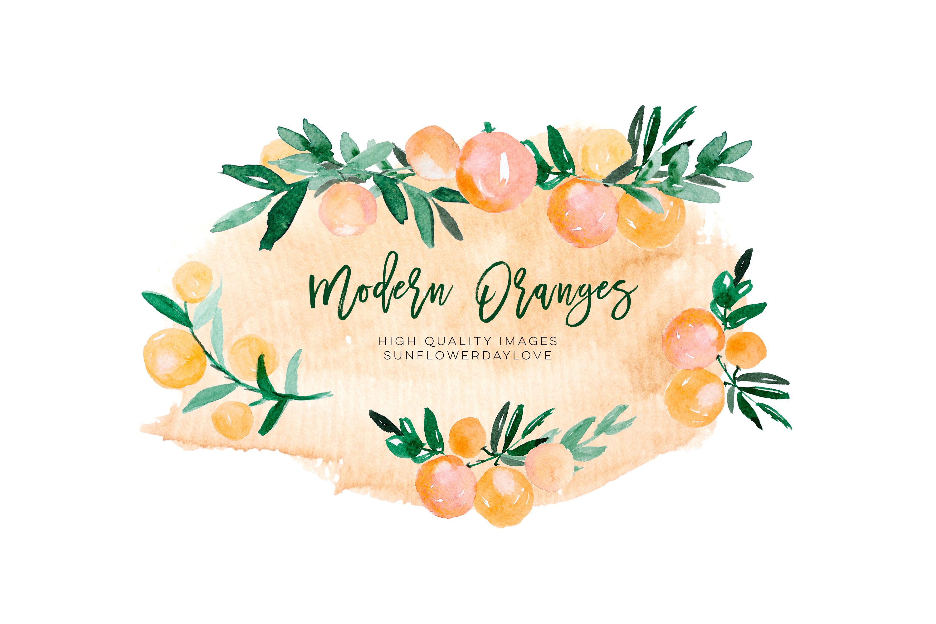 Orange Citrus Watercolor Clipart, Bitter Orange Wall Art example image 3