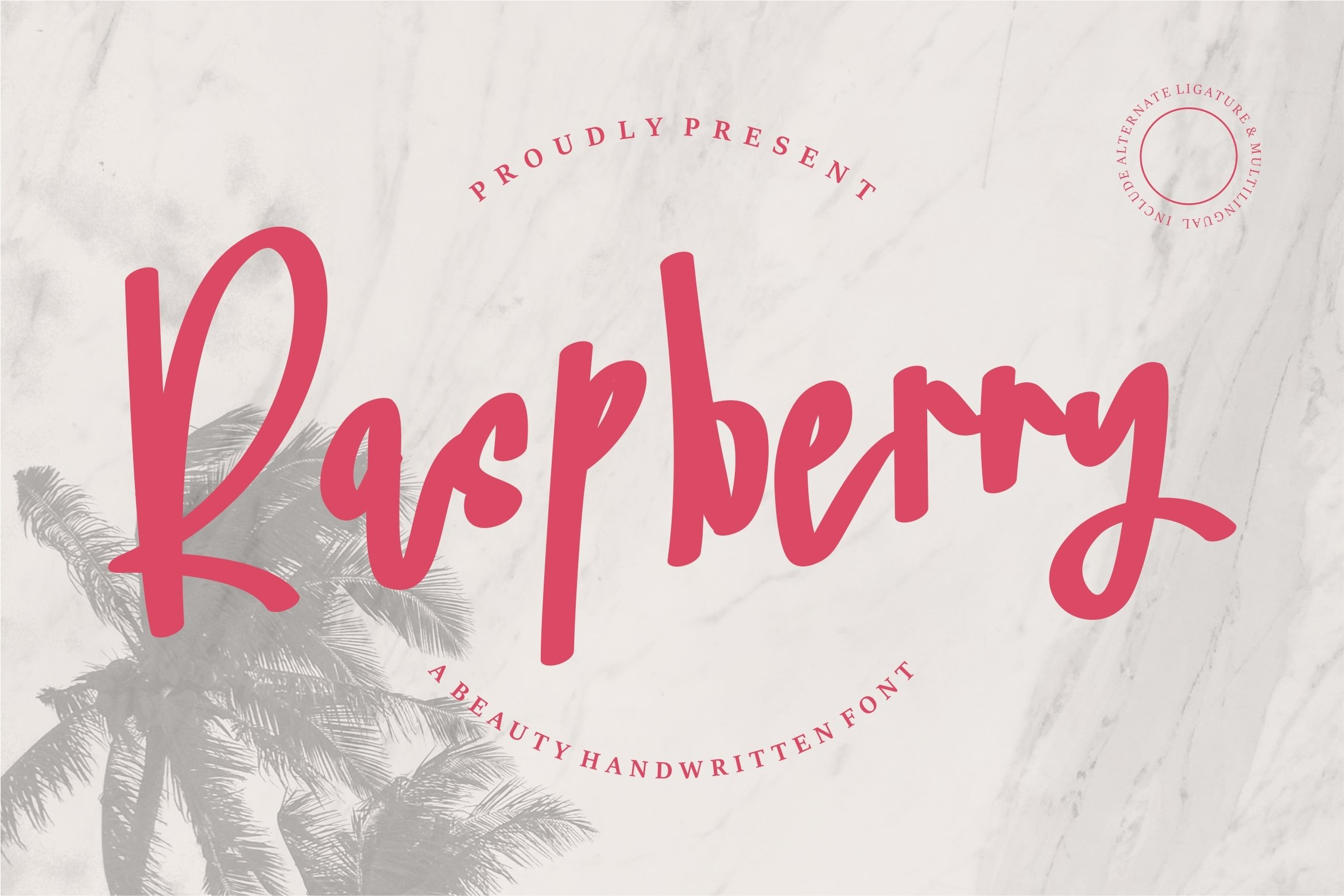 Raspberry - A Beauty Handwritten Font example image 1