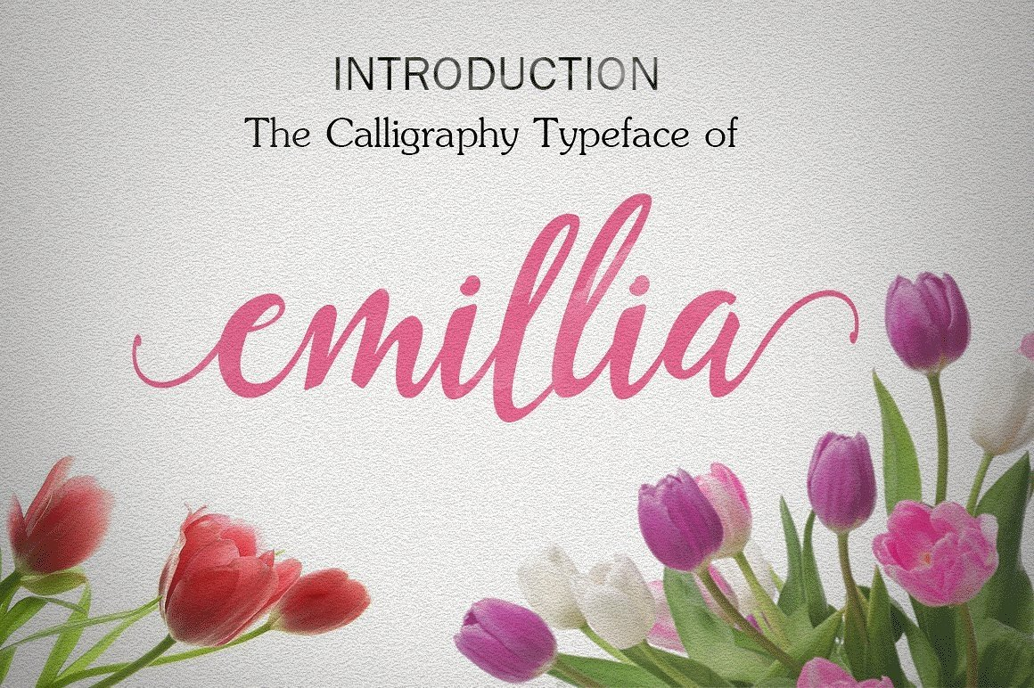 Font Bundle includes 54 fonts in 40 Typefaces example image 8