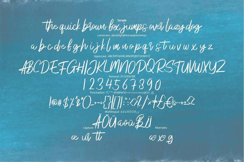 Anadego | Beauty Handwritten Script Font example image 6