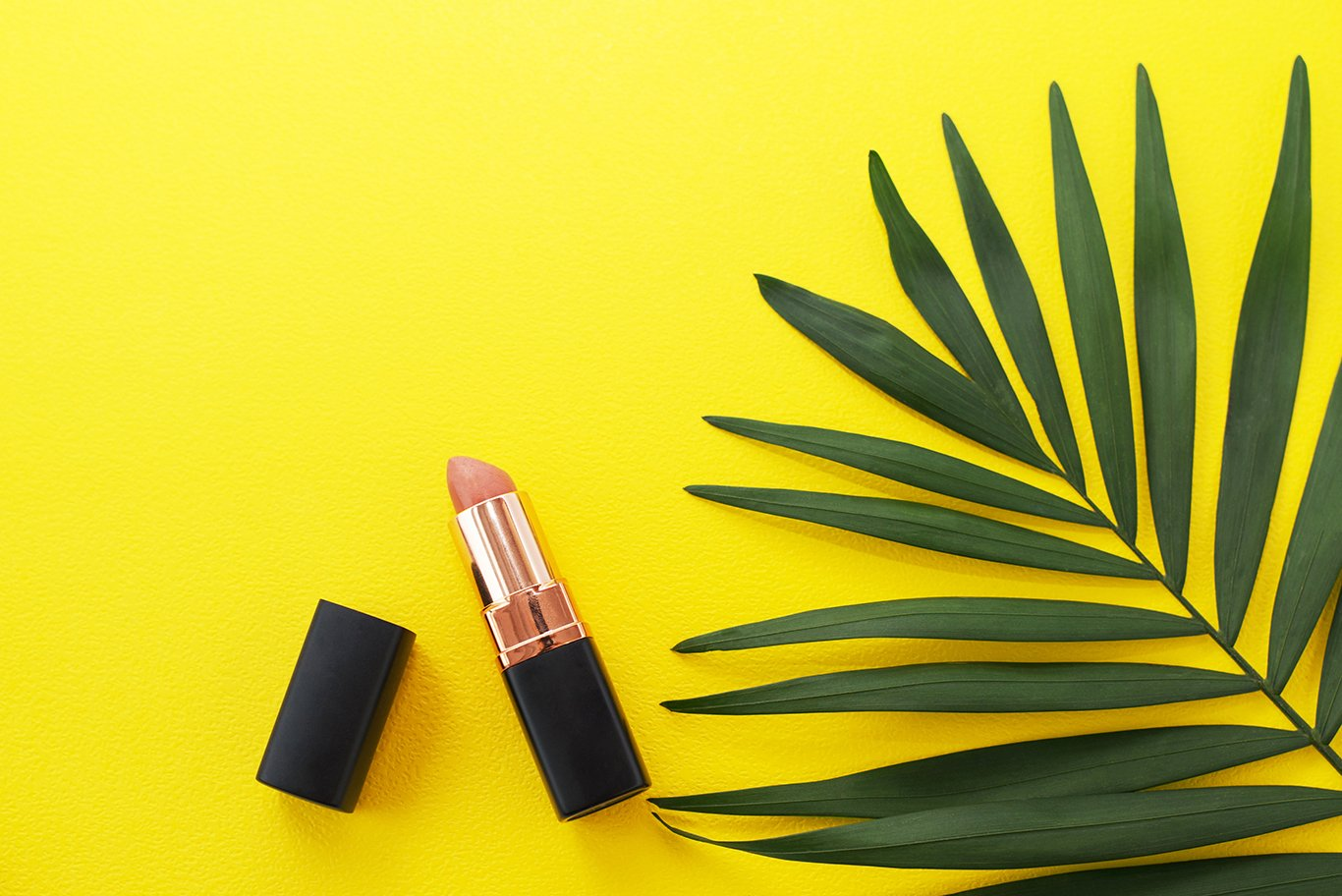 Open red lipstick on yellow background with greenery. example image 1