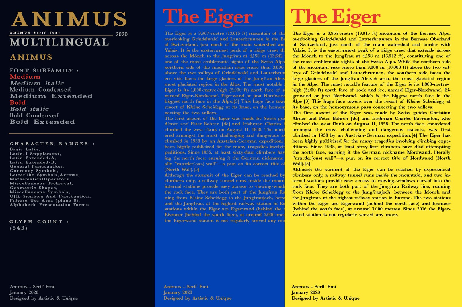 ANIMUS - Serif font family example image 6