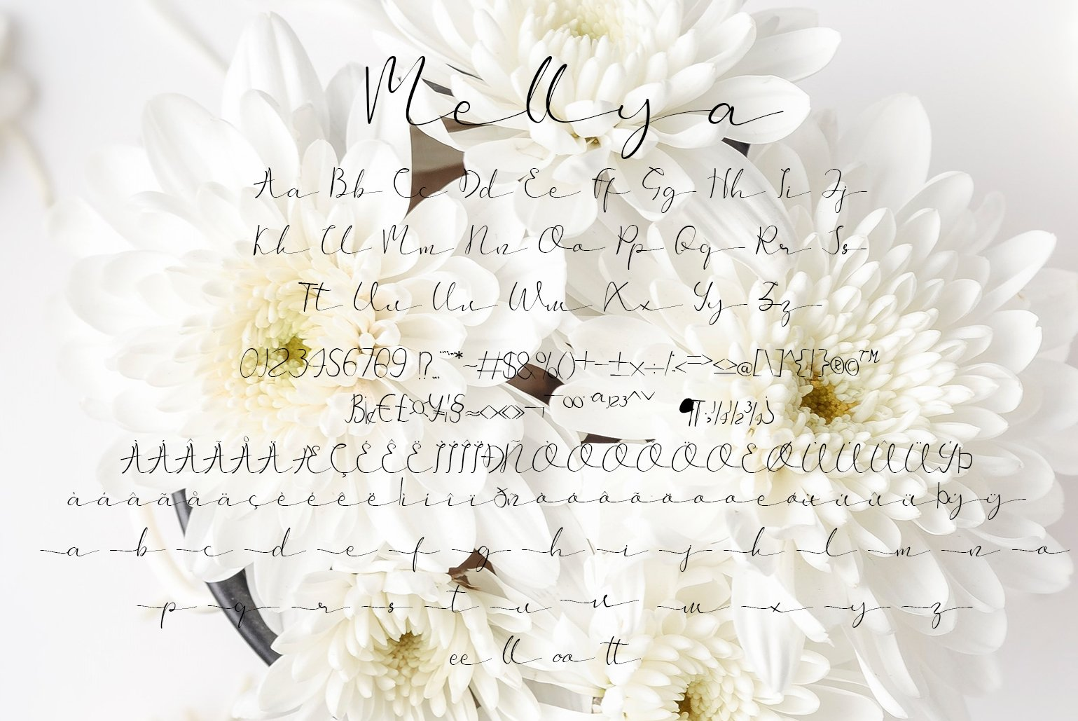 Mellya example image 4