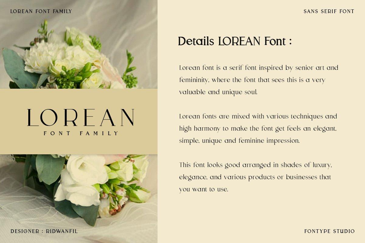 Lorean Font Family - Sans Serif Modern Style example image 4